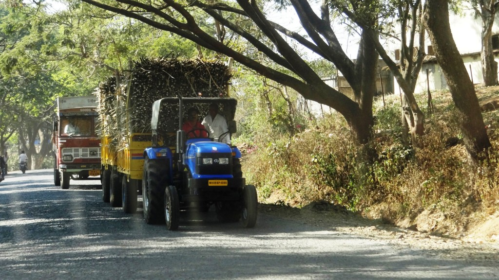 A Tractor loaded with Sugarcane