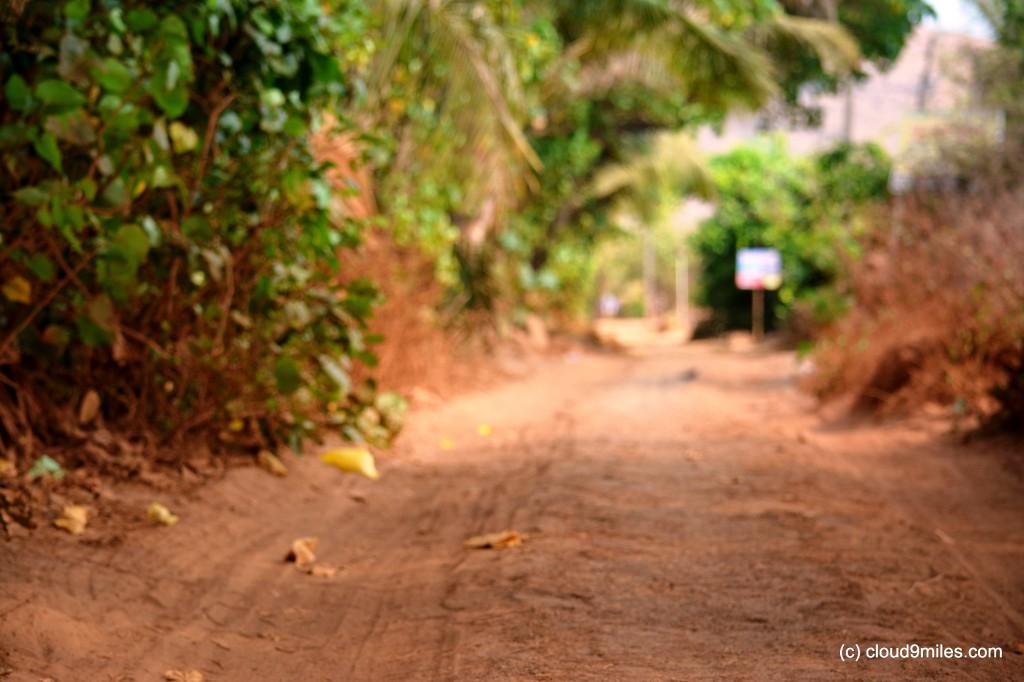 Narrow lanes of village