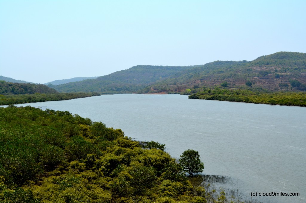 Jog River and the backwaters