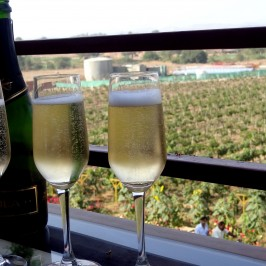 Sula Vineyard – Exquisite Indian Winery!!!
