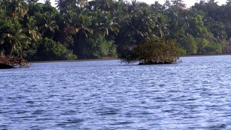 Andaman – The Emerald Island (II)