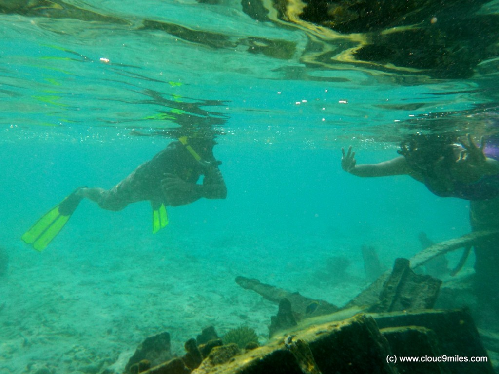 Snorkeling (44)