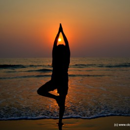 World Yoga Day!!