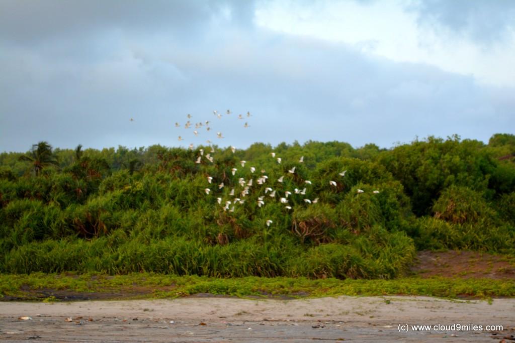 Malgund Beach (10)