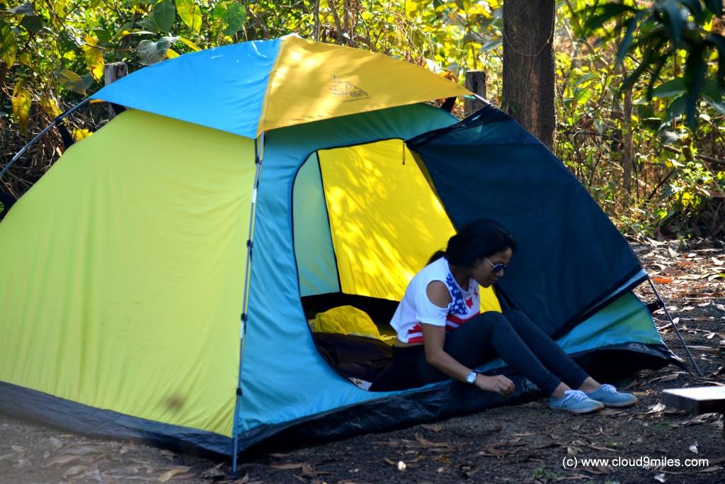 camping (34)