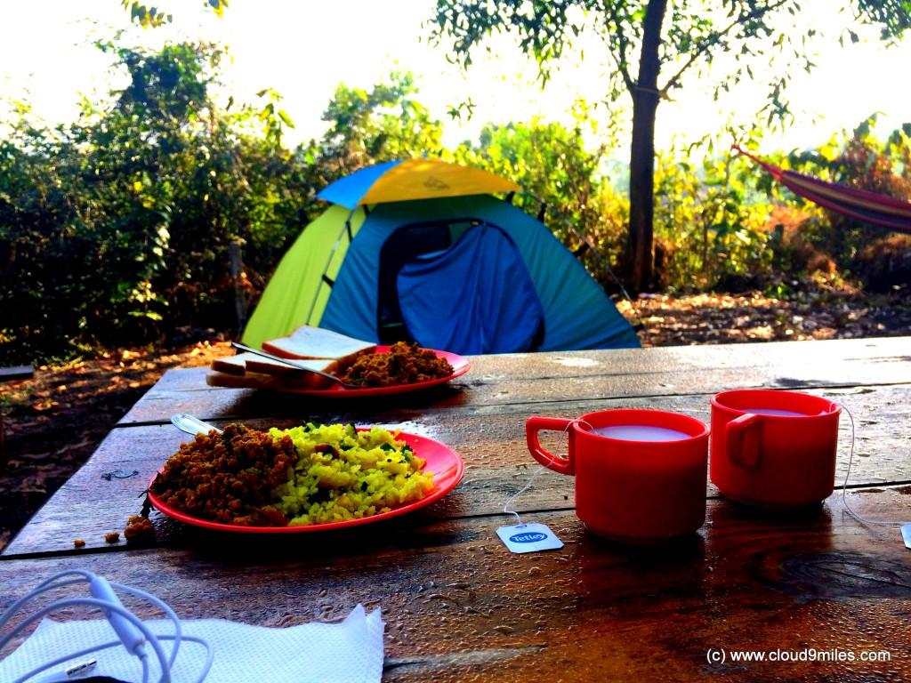 camping (73)