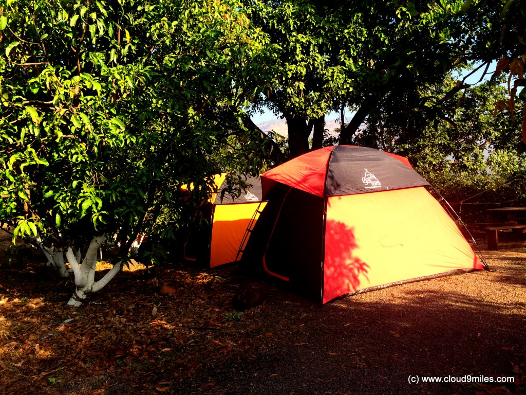 camping (8)