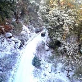 Auli – A paradise nestled in the lap of Himalaya