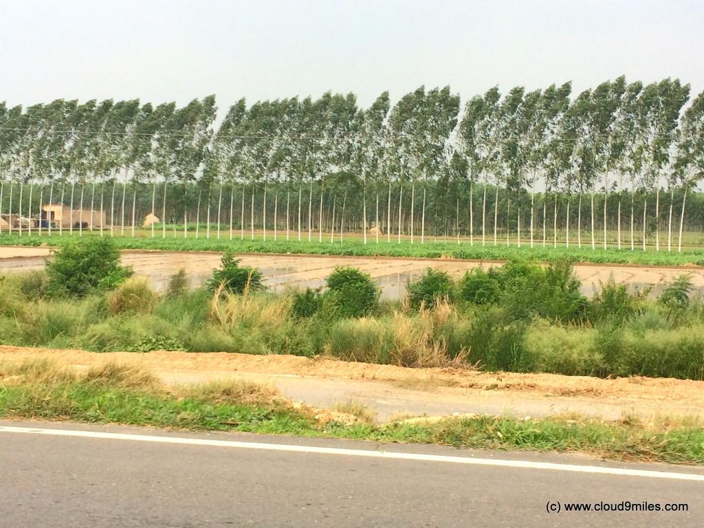 Jammu (10)