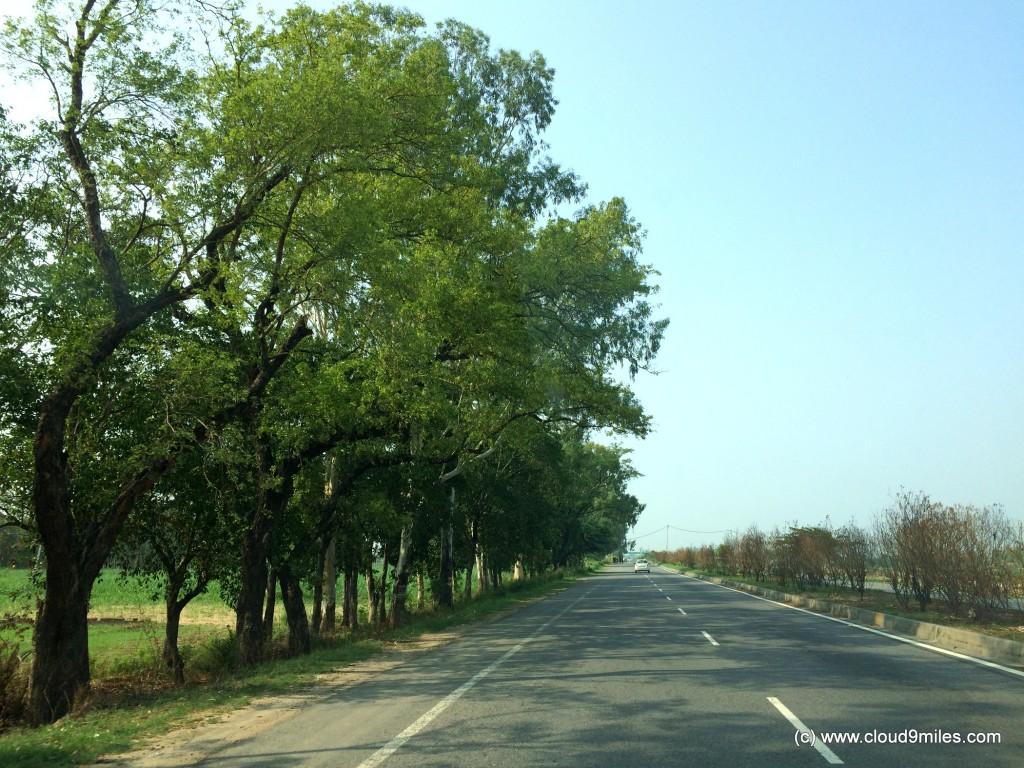 Jammu (23)