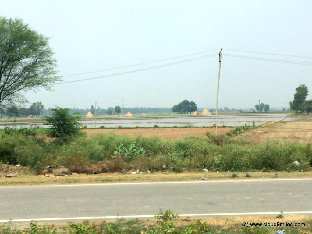 Jammu (9)