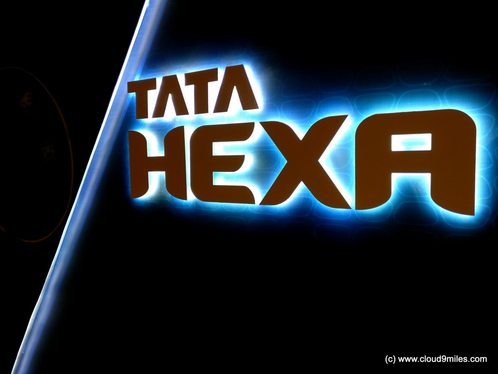 hexa-13