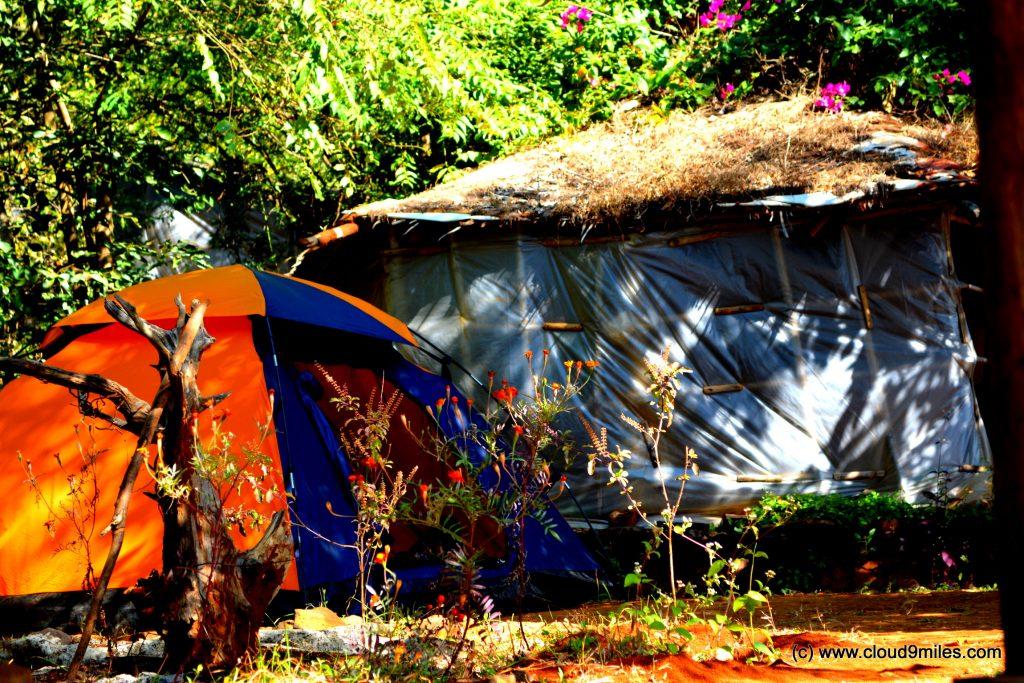 camping (59)