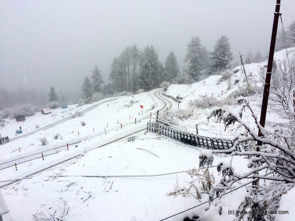 Skiing (169)