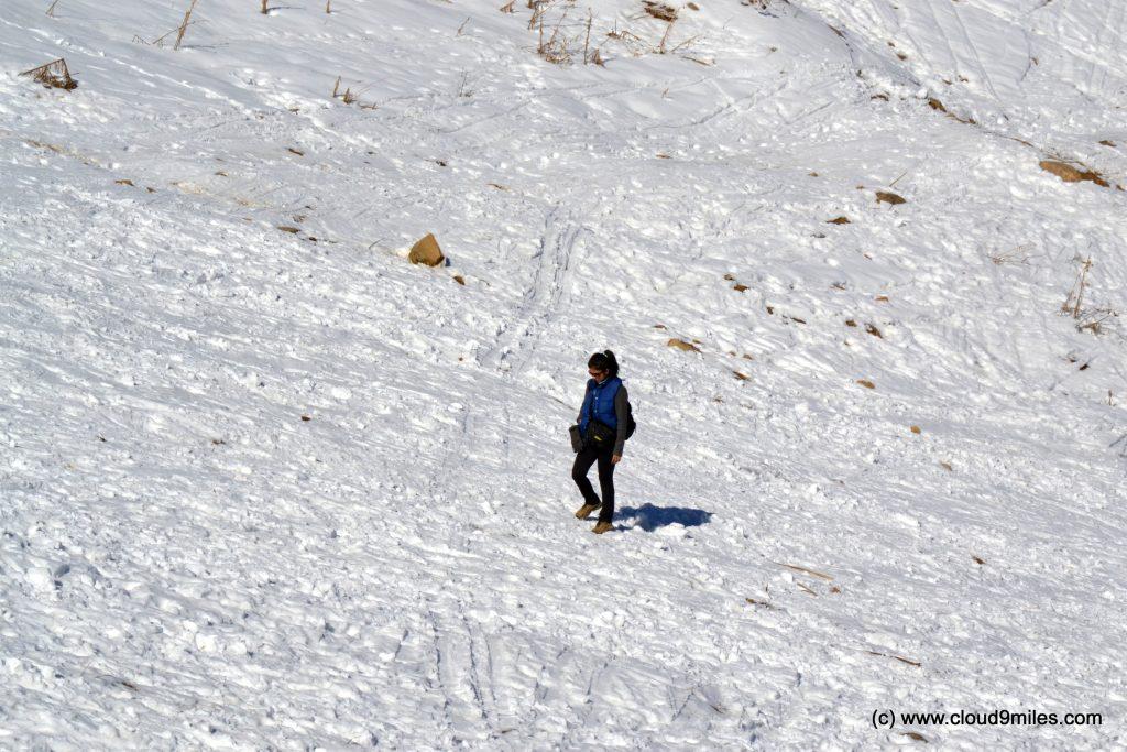 Skiing (5)