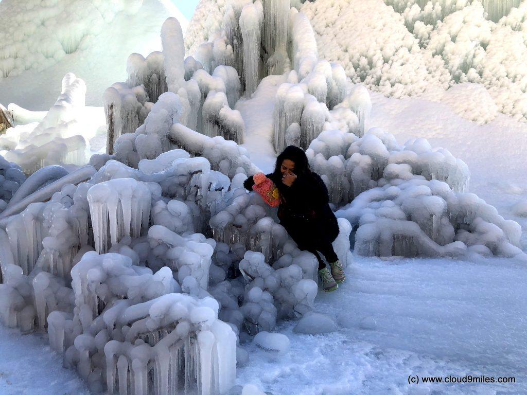 Ice Stupa (49)