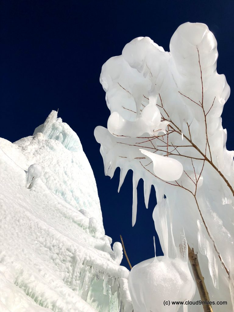 Ice Stupa (67)