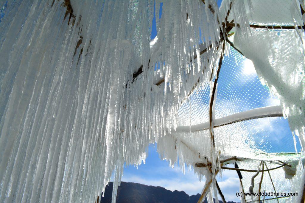 Ice Stupa (84)
