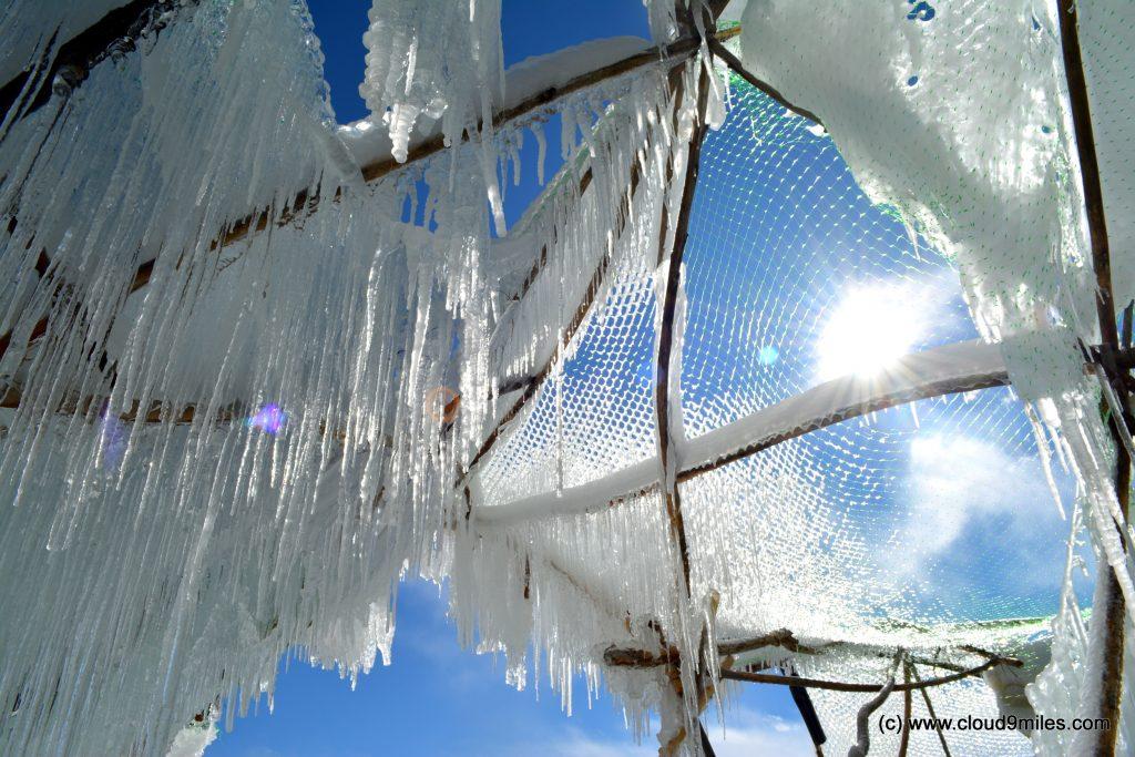 Ice Stupa (85)