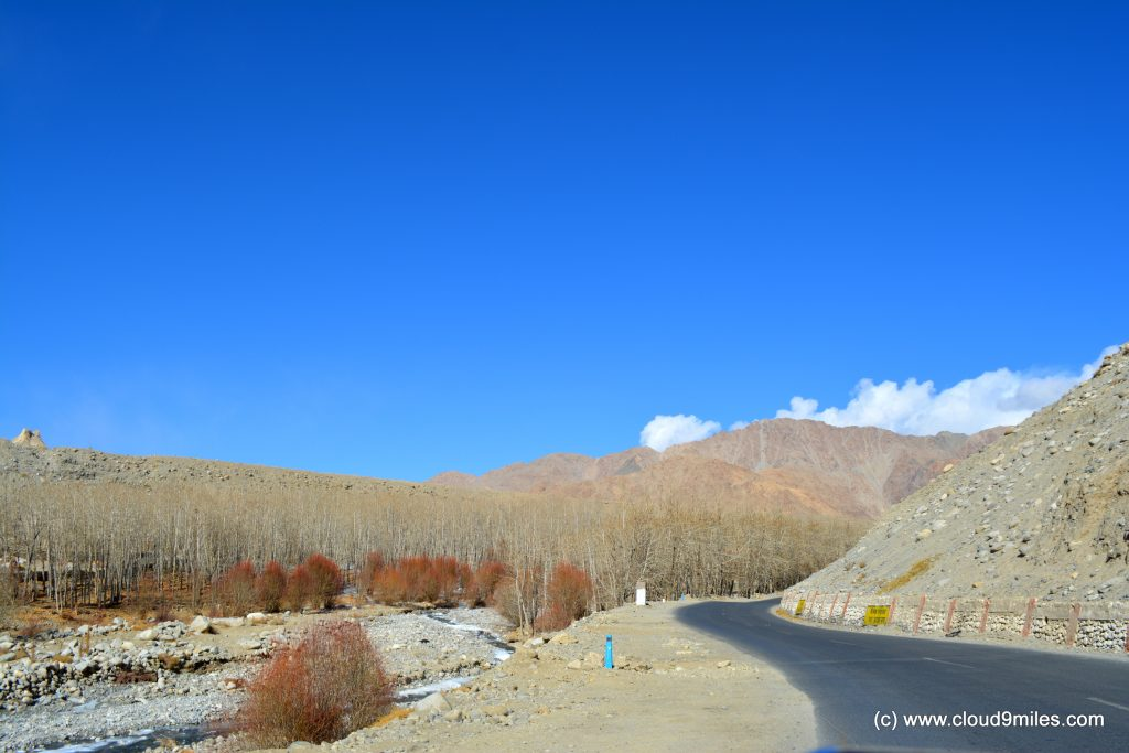 Ladakh in winters (15)