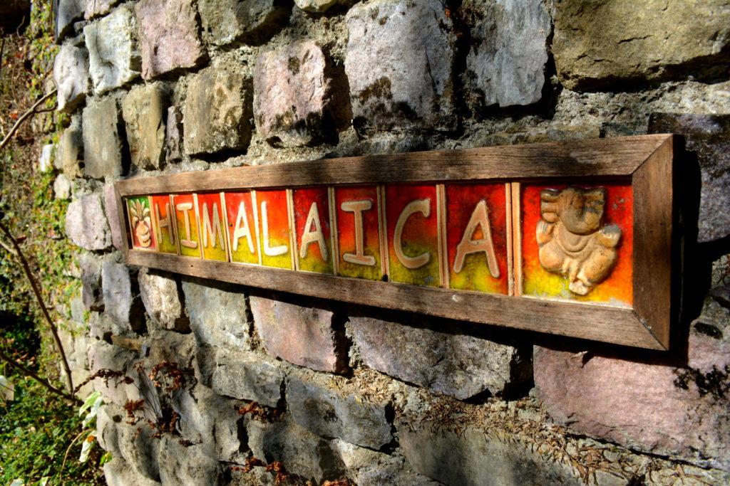 Himalaica (72)